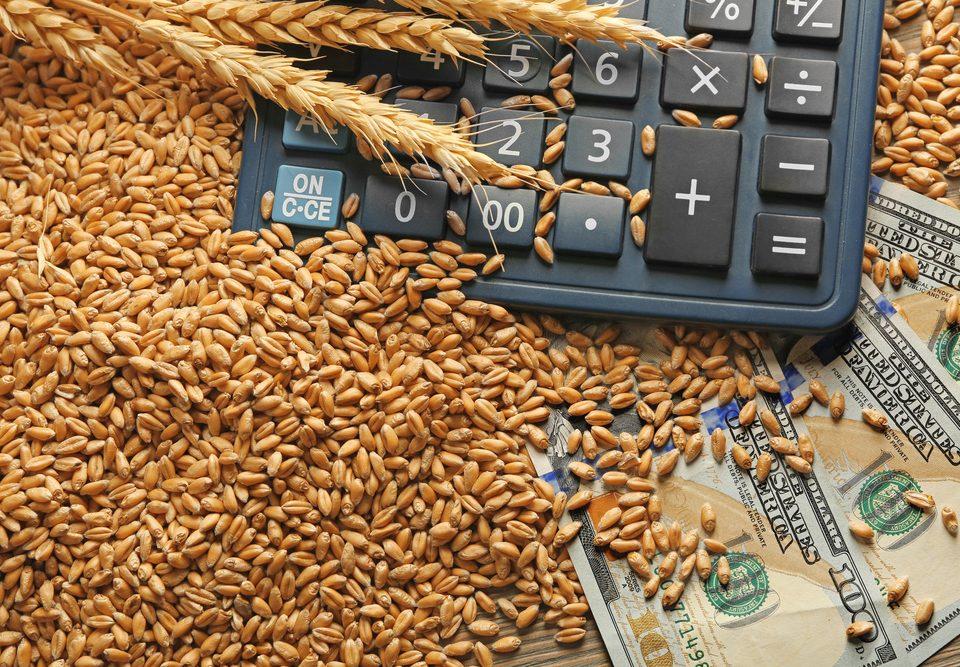 Рост цен на зерно