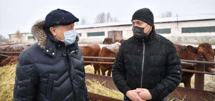 Новости сельского бизнеса: фермер Кярам Фатоян открыл крупнейшее в регионе животноводческое хозяйство