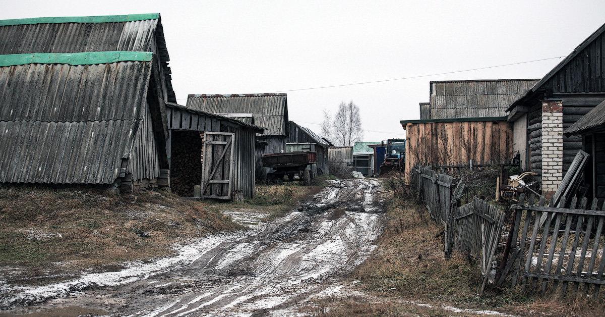 Аудитор Счётной палаты Алексей Каульбарс: куда уходят миллиарды, выделенные на деревню